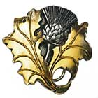 Vergoldetes Buckle als Distel, Scottish Thistle, Heraldik
