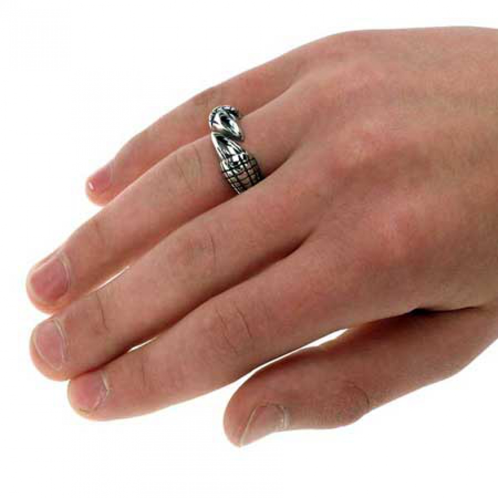 edelstahl ring klaue vogelklaue dragon claw. Black Bedroom Furniture Sets. Home Design Ideas
