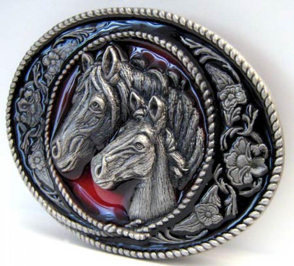 Einem Pferd das Bocken abgewöhnen wikiHow